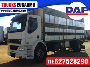 DAF LF55 250 kreaturvogn